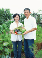 家庭菜園 22600004664| 写真素材・ストックフォト・画像・イラスト素材|アマナイメージズ