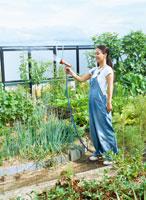 家庭菜園 22600004667  写真素材・ストックフォト・画像・イラスト素材 アマナイメージズ