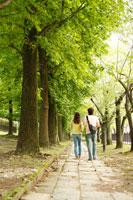 新緑の道を歩く大学生カップル後姿