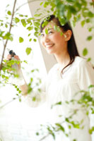 観葉植物に霧吹きかける20代女性