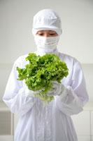 野菜を持った食品衛生服の女性