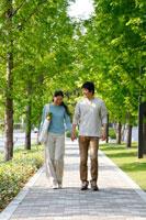 新緑の歩道を歩く30代カップル