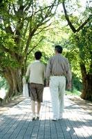 散歩道を歩くミドルカップルの後姿