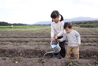 畑の土に水を撒く子供2人 22600005825| 写真素材・ストックフォト・画像・イラスト素材|アマナイメージズ