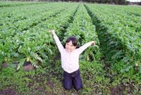 実った畑を背に大喜びする女の子 22600005858| 写真素材・ストックフォト・画像・イラスト素材|アマナイメージズ