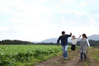 田園の畦道を歩く3人家族 22600005868| 写真素材・ストックフォト・画像・イラスト素材|アマナイメージズ