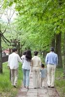 新緑の街を歩く後姿の3世代家族