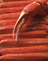 蟹の足と爪 22654000682| 写真素材・ストックフォト・画像・イラスト素材|アマナイメージズ