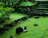 地蔵院  新緑の苔と石