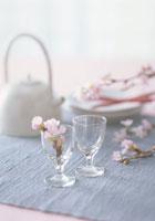 グラスに入った彼岸桜の花