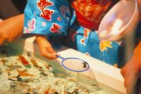 金魚すくい 22709001259| 写真素材・ストックフォト・画像・イラスト素材|アマナイメージズ
