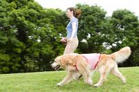 公園での若い女性と愛犬