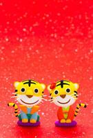 トラの男の子と女の子 22748000580| 写真素材・ストックフォト・画像・イラスト素材|アマナイメージズ