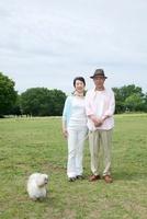 公園で犬と散歩するシニア夫婦