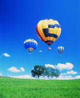 気球と青空と草原