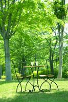緑の中にテーブルと椅子