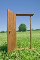 野原のドア