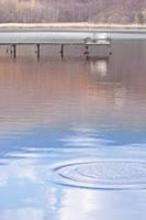 水紋の広がる水面 22880003763| 写真素材・ストックフォト・画像・イラスト素材|アマナイメージズ