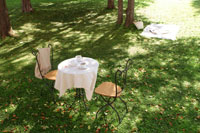 木立の中のテーブルとイス