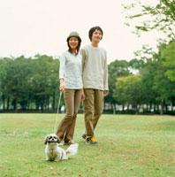 公園で遊ぶ夫婦と犬
