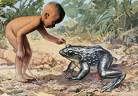 naked boy looking at goliath frog