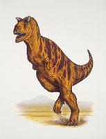Close up of a dinosaur