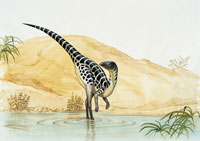 Side profile of a dinosaur in water