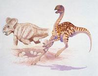 Dinosaur with another one laying egg 22907003544| 写真素材・ストックフォト・画像・イラスト素材|アマナイメージズ