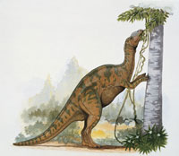 hadrosaurus dinosaur eating leaves