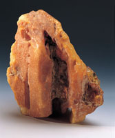 Close up of an Amber rock