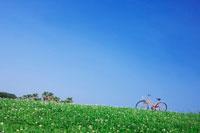 青空と丘と自転車