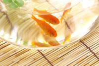 ガラスの器に泳ぐ金魚