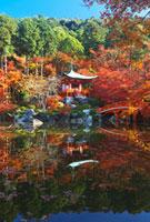 醍醐寺の弁天堂と紅葉 22910001723A  写真素材・ストックフォト・画像・イラスト素材 アマナイメージズ