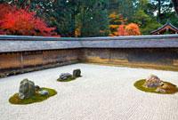 龍安寺の石庭と紅葉