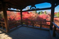 東福寺の通天橋と紅葉 22910001902| 写真素材・ストックフォト・画像・イラスト素材|アマナイメージズ