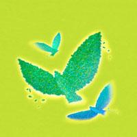 葉で作った緑の鳥 3羽