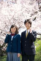 桜と高校生カップル