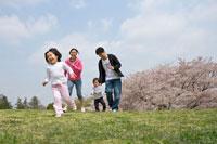 桜の咲く丘を走ってくる親子