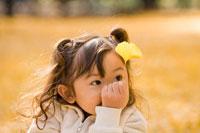 イチョウの葉っぱを見つめる女の子 22946000711| 写真素材・ストックフォト・画像・イラスト素材|アマナイメージズ