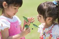 サクランボを見る姉妹 22946000952| 写真素材・ストックフォト・画像・イラスト素材|アマナイメージズ