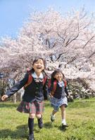 桜咲く公園を走る新一年生