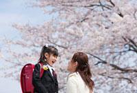 桜の花と新一年生と母親