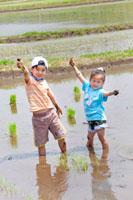 田植えをする男の子と女の子 22946001979| 写真素材・ストックフォト・画像・イラスト素材|アマナイメージズ