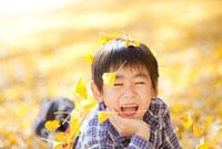 落ちてくるイチョウの葉で遊ぶ男の子 22946002305| 写真素材・ストックフォト・画像・イラスト素材|アマナイメージズ
