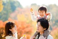 紅葉の公園で息子を肩車して遊ぶ親子 22946002320| 写真素材・ストックフォト・画像・イラスト素材|アマナイメージズ