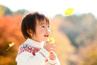 落ちてくるイチョウの葉を見る男の子 22946002324| 写真素材・ストックフォト・画像・イラスト素材|アマナイメージズ