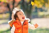 紅葉の公園で落ちてくるイチョウの葉を見る男の子