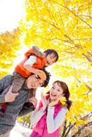 紅葉の公園で息子を肩車して遊ぶ親子 22946002331| 写真素材・ストックフォト・画像・イラスト素材|アマナイメージズ