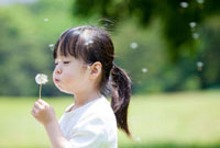 タンポポの綿毛を飛ばす女の子 22946002518| 写真素材・ストックフォト・画像・イラスト素材|アマナイメージズ