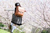 桜の公園をかける新一年生の後ろ姿